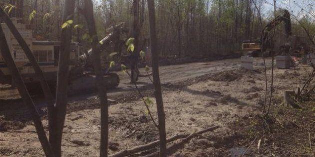 La destruction des milieux humides menace la région de