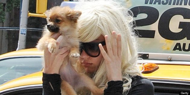 NEW YORK, NY - JULY 10: Amanda Bynes as seen on July 10, 2013 in New York City. (Photo by NCP/Star