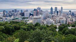Condo à Montréal: les acheteurs