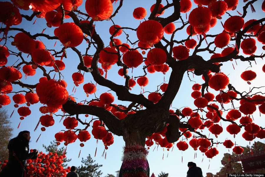 Les 52 plus belles photographies de 2014