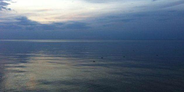 Le Saint-Laurent plus acide, des chercheurs inquiets pour les espèces marines qui y