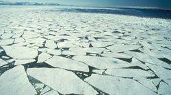 La disparition des glaces marines crée un tout nouvel