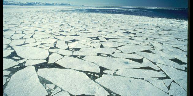 Changements climatiques: la disparition des glaces marines crée un tout nouvel