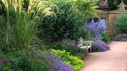 Comment désherber son jardin sans produits