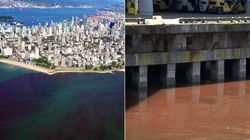 Les eaux de Vancouver deviennent rouge