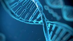 Est-il possible de breveter l'ADN