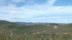 Centre-du-Québec : un recours collectif est autorisé contre l'entreprise Éoliennes de l'Érable