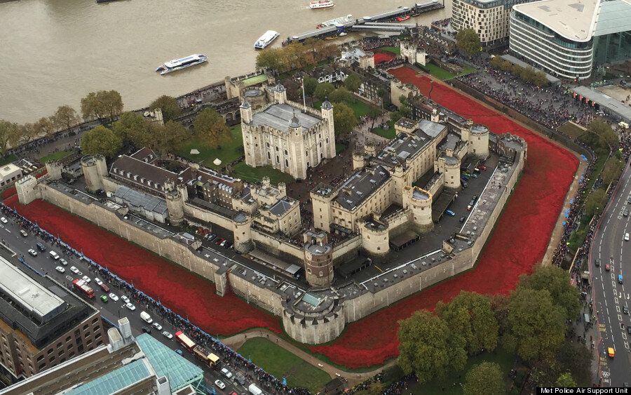 Jour du Souvenir: une marée de coquelicots à Londres