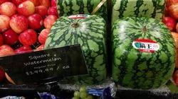 Les melons d'eau carrés sont de retour à