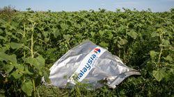 Écrasement du vol MH17: l'avion a été abattu par «un grand nombre de projectiles»