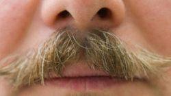 Le mois de la moustache est