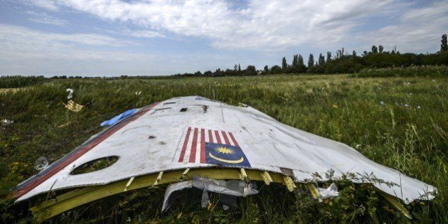 A piece of the wreckage of the Malaysia Airlines flight MH17 is pictured in a field near the village...