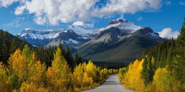 Parcs et loisirs : les parcs nationaux dont votre famille
