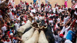 Des hommes sont tués par un taureau lors d'un festival au