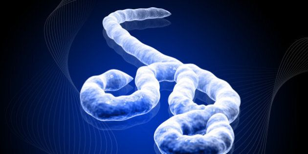 Ebola : un nouveau cas confirmé au Nigeria, les agents de santé en première
