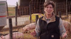 Joni Ernst, castreuse de porcs et révélation des élections de mi-mandat aux