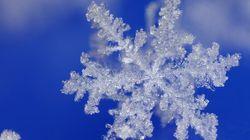 3 mai: Calgary a reçu 10 cm de neige, et des sorties de routes sont