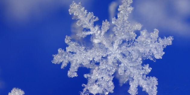 WORTHING, UNITED KINGDOM - NOVEMBER 2010: *** EXCLUSIVE *** Freshly fallen snow flake pictured in Worthing,...