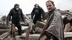 Les 3 bonnes raisons de courir voir «L'Aube de la planète des singes»