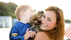 Situation délicate: cinq règles pour bien vivre avec son chien et son