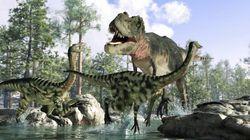 Une des plus grandes idées reçues sur les dinosaures