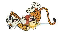 Le créateur de «Calvin et Hobbes» fait un retour à la bande