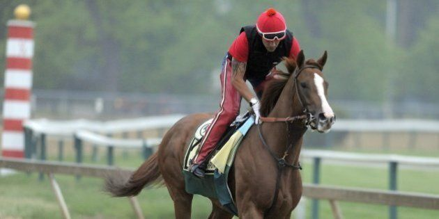 Kentucky Derby winner California Chrome, with exercise rider Willie Delgado up, during a morning workout...