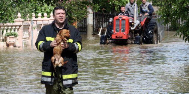 Au moins 30 morts dans les pires inondations en Bosnie et Serbie depuis un