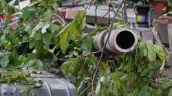 Ukraine: Vladimir Poutine intervient en faveur de soldats