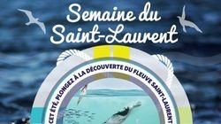 Semaine du Saint-Laurent : 50 activités partout au Québec pour célébrer le