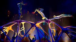 Cirque du Soleil : 28000$ d'accessoires ont été volés à