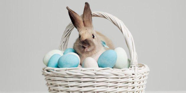 Les origines de Pâques : un œuf décoré millénaire et un mystérieux