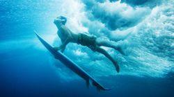 5 moyens de protéger l'océan grâce au