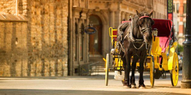 Montréal souhaite accueillir davantage de touristes