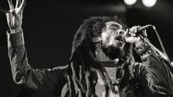 Une marque de cannabis au nom de Bob