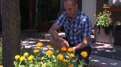 Cultiver des légumes sera plus facile dans
