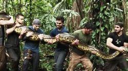 Avalé par un serpent, l'émission qui fait polémique