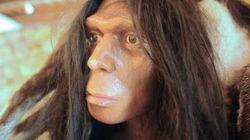 L'homme de Neanderthal mangeait aussi des
