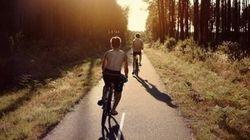 Observations d'un (nouveau) cycliste