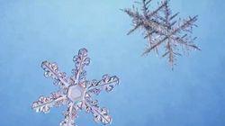 Tempête de neige à venir dans l'est du