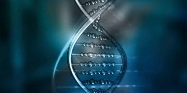 Premier clonage de cellules adultes pour créer des cellules souches