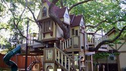 Les cabanes dans les arbres qui feront rêver vos enfants