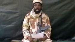 Boko Haram: du terrorisme à l'esclavage sexuel des