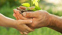 D'où vient la notion de développement durable? - Héloïse Berkowitz et Hervé