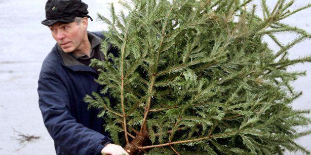 Recyc-Québec invite les citoyens à donner une deuxième vie à leur sapin de