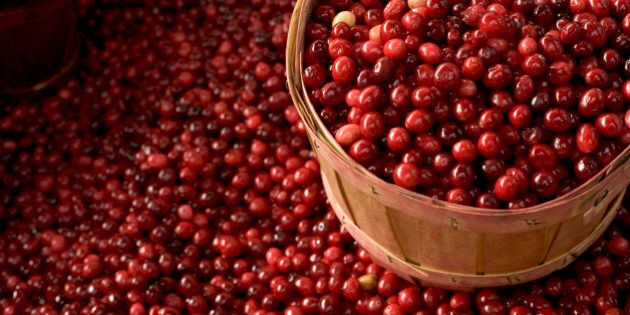 Cranberry basket at a market in Montreal, Canada.