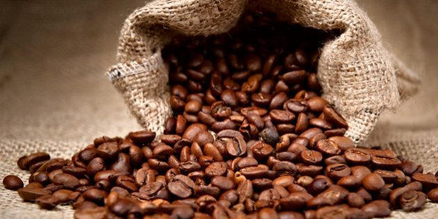 studio shot of coffee beans in...