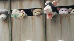 «Les sirènes des agneaux», signé