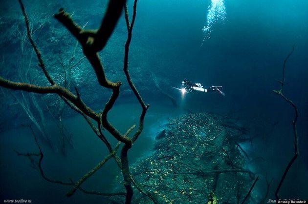 Une rivière sous la mer dans la Cenote Angelita au Mexique