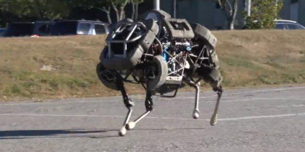 Google achète une société spécialisée dans les robots, Boston